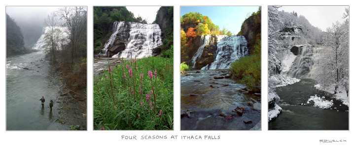 Four Seasons at Ithaca Falls