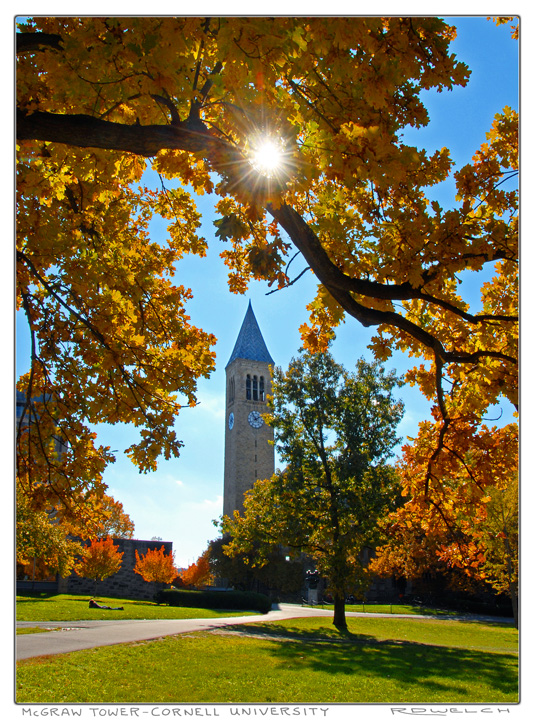 McGraw Tower Autumn