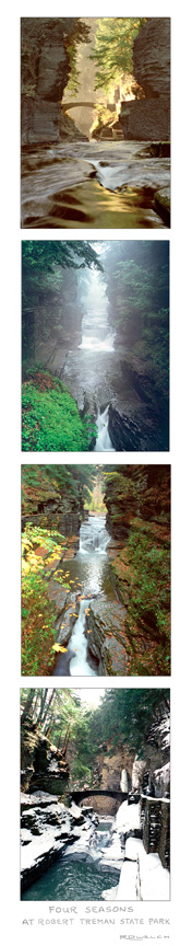 Four Seasons at Robert Treman State Park