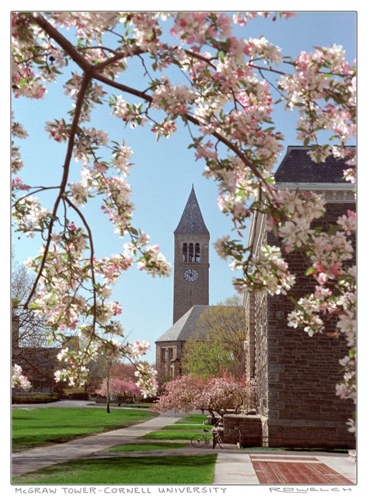 McGraw Tower with Flowers