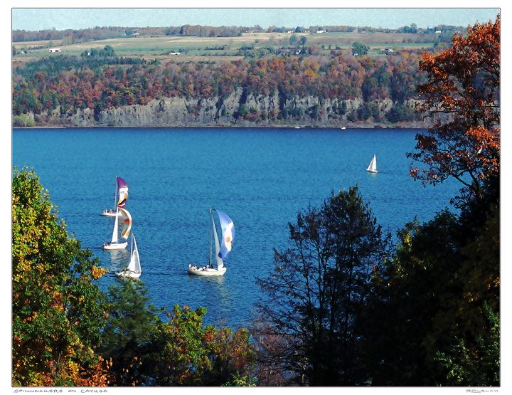 Spinnakers on Cayuga
